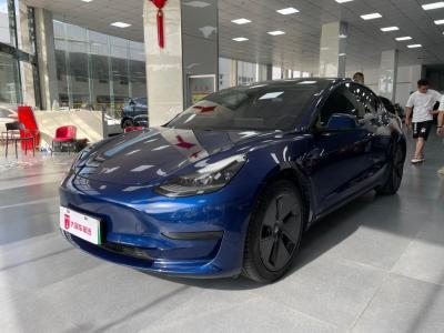 特斯拉 Model 3 标准续航后驱升级版图片
