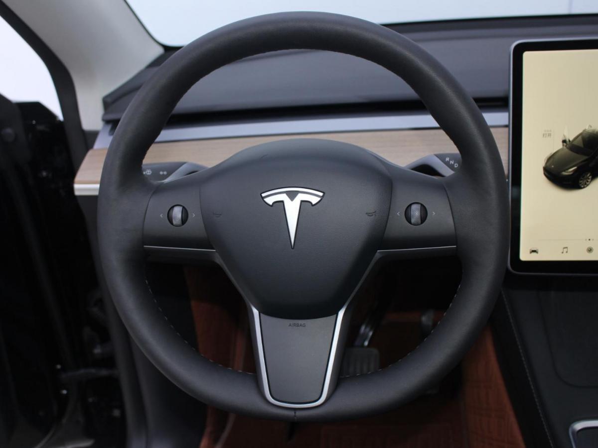 特斯拉 Model Y  2020款 长续航后轮驱动版图片