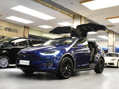 2020年10月 特斯拉 Model X 长续航版图片