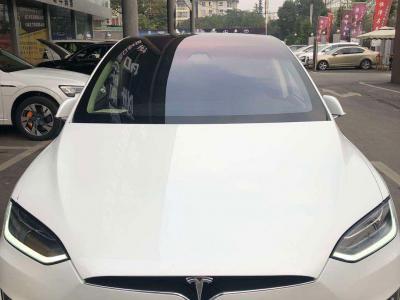 2018年6月 特斯拉 Model X Model X 100D 长续航版图片