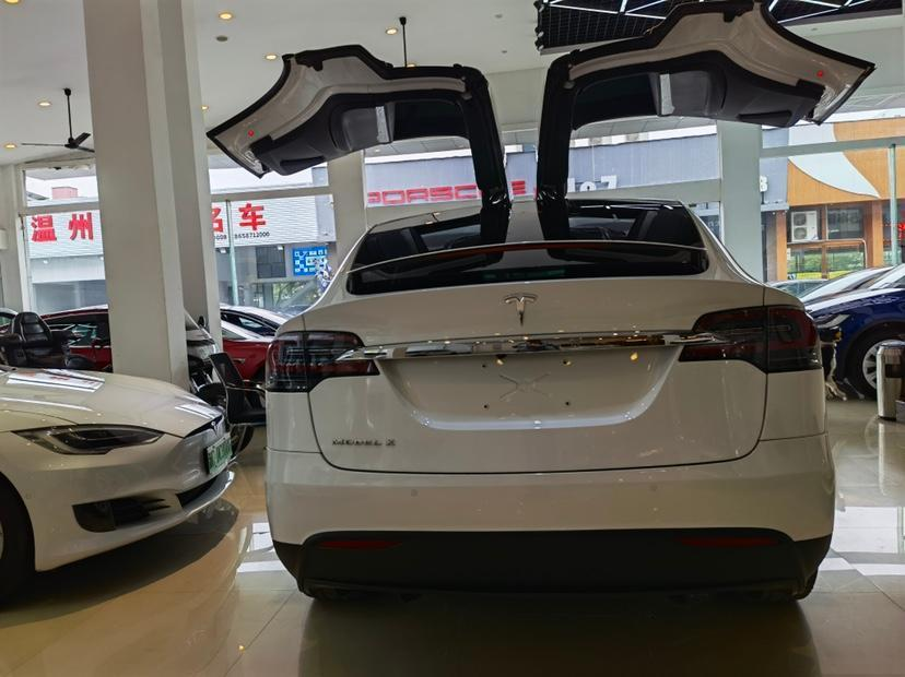 特斯拉 Model X  2020款 长续航升级版图片